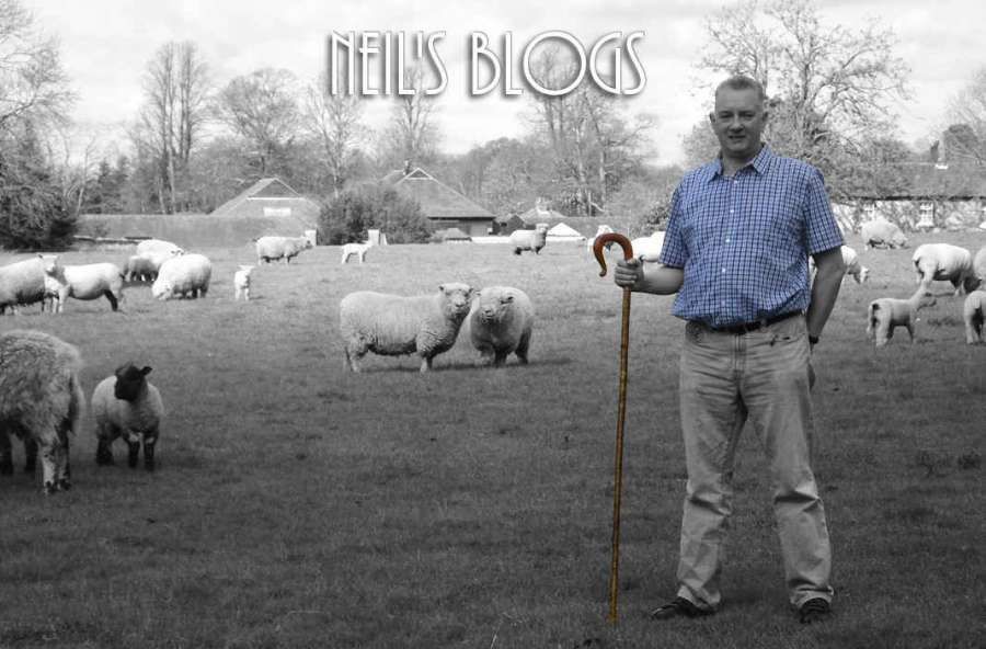 Neil Coopers Blog